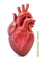 Herzgesund - Herzgespann Kapseln von ascopharm