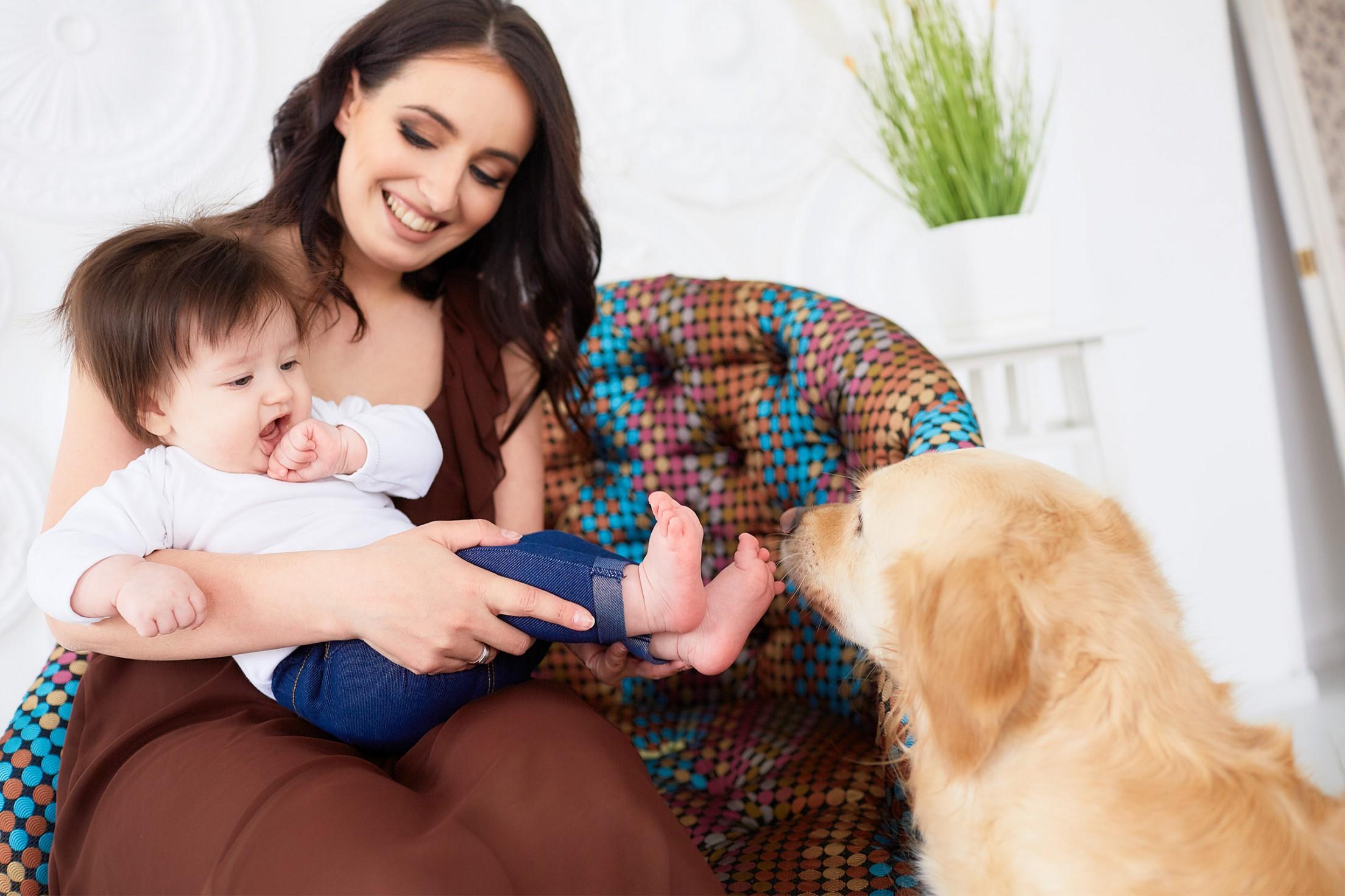 Baby hund kennenlernen