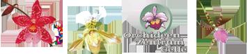 Orchideen-Zentrum Wichmann e.K.